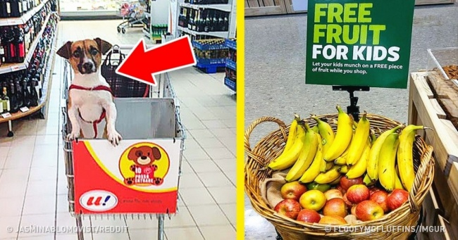 14 Stores Where Every Last Detail Is Designed for Customers