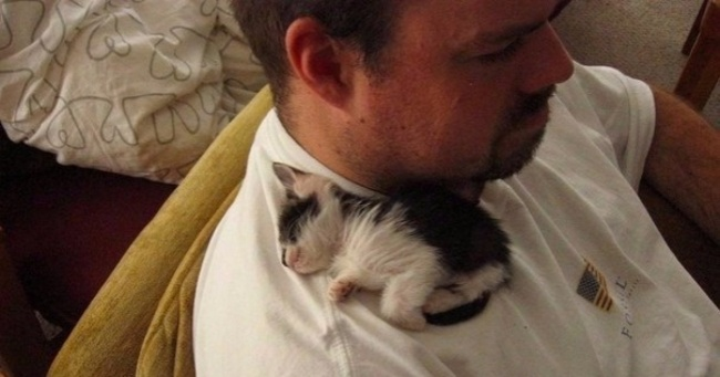 15 handsome men with their kittens