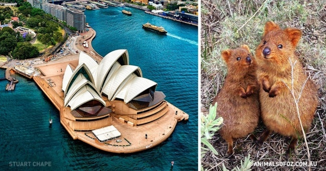 21 reasons why Australia might be the best place on Earth