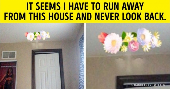 25 People Who Are Still in Shock From What They Have Seen