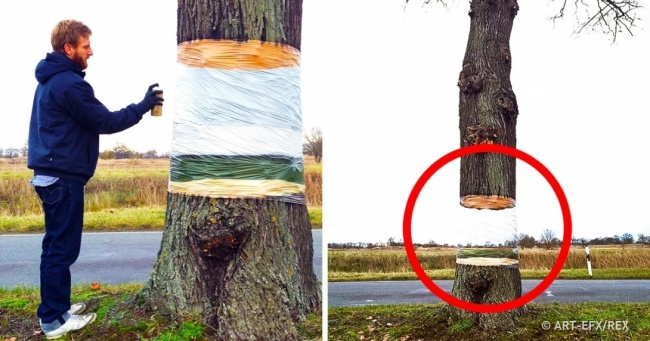 11 of the Most Mind-Blowing Optical Illusions Ever