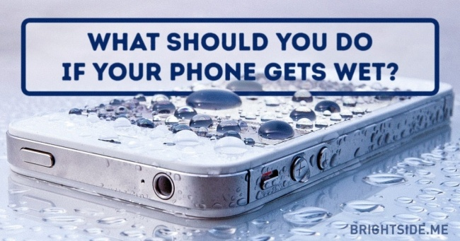 What should you do if your phone gets wet?